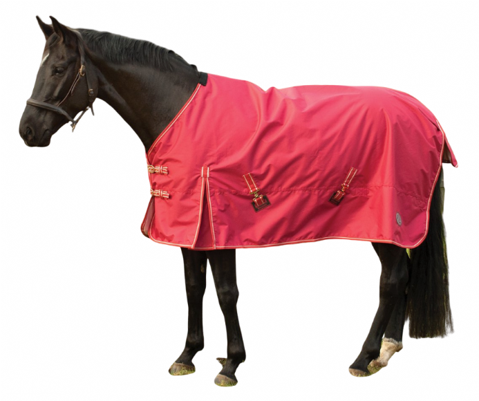Blue Lizard Equestrian|No-Fill  Waterproof Outdoor Rug
